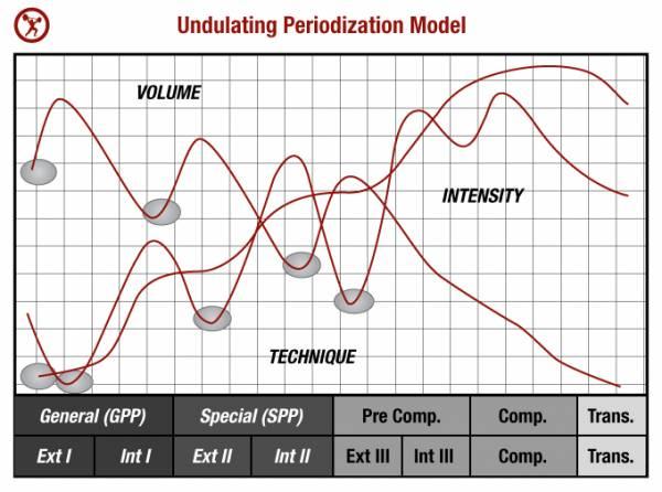 undulating-periodization-model