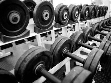8383_dumbbells-in-a-gym
