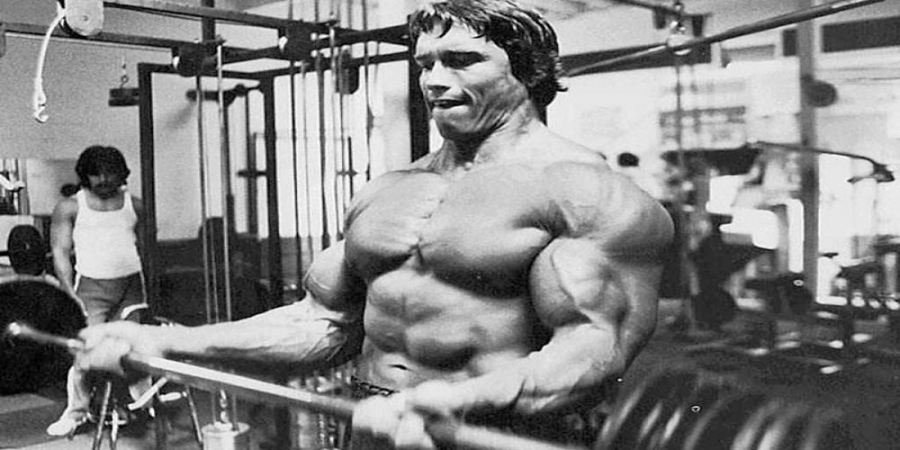 arnold800